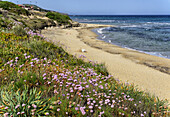 Sardinian beach, northern Sardinia, Italy.