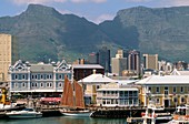 South Africa, Cape Town, Victoria and Alfred Waterfront, harbor, Table Mountain, skyline,