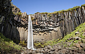 Svartifoss waterfall and basalt cliff in Iceland prime tourist destination