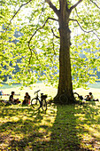 Cyclists resting in a shadow of a tree