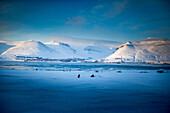 Longyearbyen, Spitzbergen in March, Spitzbergen, Svalbard, Norway