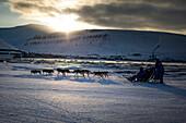 Dog sledge in winter, Longyearbyen, Spitzbergen in the background, Spitzbergen, Svalbard, Norway