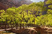Brücke nahe der Zion Lodge, Cottonwood, Zion National Park, Utah, USA