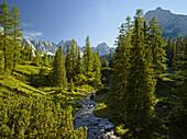 Geißbach, Mieminger Mountains, Tyrol, Austria