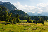 Hiking trail to Neuschwanstein Castle, 19th century, royal castle of King Ludwig II., Hohenschwangau, near Füssen, Allgaeu Alps, mountains, district Ostallgaeu, Allgaeu, Bavaria, Germany, Europe