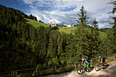 two mountain bikers on a forest road near Maria Weissenstein, Trentino Italy