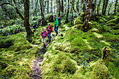 Zwei Mädchen und eine Frau wandern im Regenwald von Fjordland beim Lake Manapouri, Hope Arm, South Island, Neuseeland