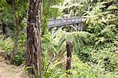The Bridge to Nowhere, A canoe trip on the Whanganui River, North Island, New Zealand