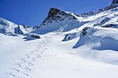 Downhill tracks in front of Rocca La Marchisa, Rocca La Marchisa, Valle Varaita, Cottian Alps, Piedmont, Italy