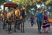 Pilgrims with oxcart on a pilgrimage 'Nuestra Senora de El Rocio' on the route La Raya Real from Seville to El Rocio, Huelva, Andalusien, Spanien
