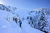 Group of persons back-country skiing ascending towards Pallspitze, Pallspitze, Langer Grund, Kitzbuehel range, Tyrol, Austria