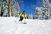 Two persons back-country skiing downhill through winter forest, Sonntagshorn, Chiemgau range, Salzburg, Austria