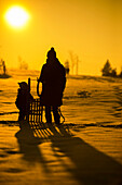 Mother standing with a small child and sled in the snow and looking at the winter sun, backlit, Aubing, Munich, Bavaria, Germany
