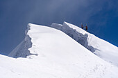 A female and a male mountaineer carrying their touring skis on their backpacks and ascending a steep snow slope, next to them big snow cornices, summit of Roccia Nera, Breithorn massif, Pennine Alps, canton of Valais and region of Aosta Valley, national b