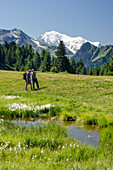 A female and a male hiker are standing on a meadow, in front a small lake with blossoming cotton grass on Mont de l'Arpille, behind them Mont Blanc, Pennine Alps, canton of Valais, Switzerland