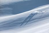 Young female freeskier riding through deep powder snow in the mountains, Pitztal, Tyrol, Austria