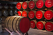 Whisky ageing barrels at The Glenmorangie Whisky Distillery, Tain, Ross-shire, Highland, Scotland, United Kingdom