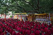 Pilger beim Gebet vor dem Mahabodhi Tempel (der Überlieferung gemäß ist es jener Ort, an dem Siddhartha Gautama, der historische Buddha, das Erwachen erlangte) im Dämmerlicht, Bodhgaya, Bihar, Indien