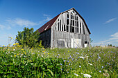 Old barn in the field, Province Quebec, Canada