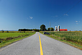 Farm with cornfield next to a country road, Province Quebec, Canada