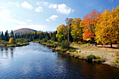 Autumn color at the Park Mont Tremblant, Province Quebec, Canada