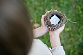Child's hands holding bird nest containing drawing of house