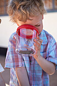 Boy watching an insect with a beaker magnifying glass, Spitzkoppe Mountains, Damaraland, Namibia