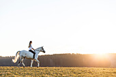 girl riding her horse at sunset, Freising, Bavaria, Germany