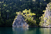 Rock Islands at Strait of Iris, Triton Bay, West Papua, Indonesia