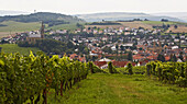 View over vineyards in Waldboeckelheim with Protestant church (left) and Catholic church (right), Administrative district of Bad Kreuznach, Region of Nahe-Hunsrueck, Rhineland-Palatinate, Germany, Europe