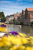 Sightseeing boat on the canal seen through flowers, Ghent, Flemish Region, Belgium
