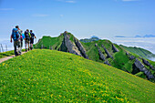 Several persons hiking ascending to Rindalphorn, Rindalphorn, Nagelfluh range, Allgaeu Alps, Allgaeu, Svabia, Bavaria, Germany