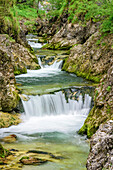 Water flowing through canyon, Weissbachklamm, Chiemgau Alps, Chiemgau, Upper Bavaria, Bavaria, Germany