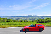 Ferrari Spider, Cabrio, Ferrari Tribute Club, Oldtimer, on the road the Tuscan landscape, Oldtimer, Racing cars, Mille Miglia, 1000 Miglia, 2014, 1000 Meilen, near Radicofani, Tuscany, Italy, Europe