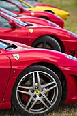 Line up of Ferrari racing cars, Rims and emblem, Scuderia Ferrari, Ferrari Tribute Club, Rennwagen, Autorennen, Mille Miglia, 1000 Miglia, 1000 Meilen, Brescia, Lombardy, Italy
