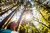 Caucasian woman standing in sunny forest, Muir Woods, California, United States
