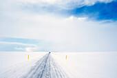 Tire tracks on rural road in snowy landscape, reykjavik, Hofudborgarsvaedi, Iceland