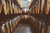 Wine barrels aging, Walla Walla, WA, USA