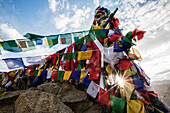 Low angle view of colorful prayer flags on monastery wall, Leh, Ladakh, India