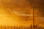 Power lines on road in grassy remote landscape, Nourivier, Northern Cape, South Africa