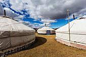 Tourist tents at remote campsite, Bayan Ulgii, Bayan Ulgii, Mongolia