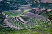 South America, Peru, Cuzco region, Urubamba Province, Inca sacred valley, Moray center, an old inca agricultural research center