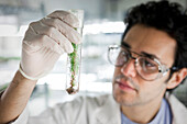 Middle Eastern scientist holding specimen in vial