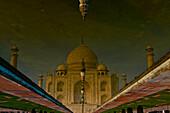 Taj Mahal reflection in pond