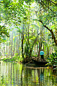 Man standing in boat on tranquil forest river