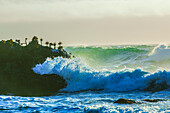 Waves crashing on cliffs, Bodega Bay, California, United States