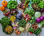 Assortment of Fresh Garden Vegetables