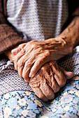 Elderly Woman's Hands, Close-Up