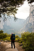 A backpacker hikes up a wooded trail on a sunny day in Yosemite National Park.