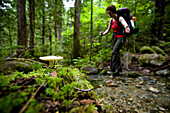 A young woman in red with trekking poles, hikes past a single mushroom in the moss during a hike along Thunder Creek in the Washington Cascades in Washington.